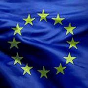 Kampars: Eiropas Savienībai ar Krieviju pēc iespējas ātrāk jāvienojas par tās koksnes eksporta nodevu pazemināšanu Thumbnail